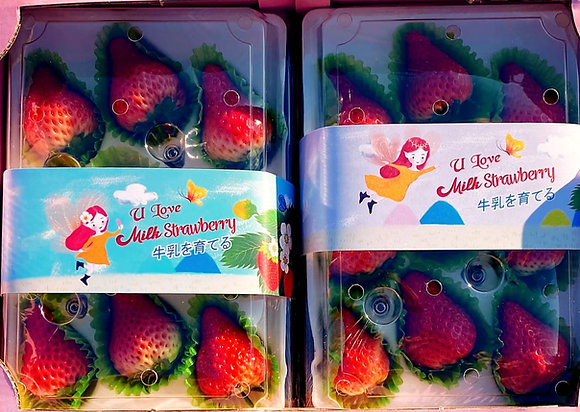 [Min 2 boxes] Farm Fresh Milk Strawberries