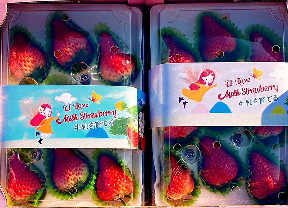 [Min 2 boxes] Farm Fresh Milk Strawberries