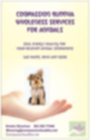 flyer for animal healing
