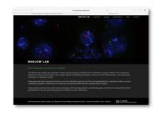 barlowlab-08.jpg
