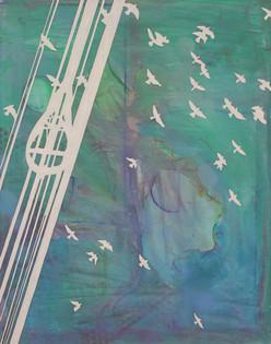 for the birds (austin) [19-169]