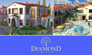 Diamond_2020.jpg