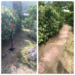 Cane-Garden-Walkway-(web)