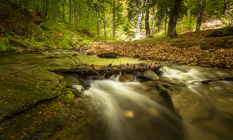Cossyimages Waterfall (10).jpeg