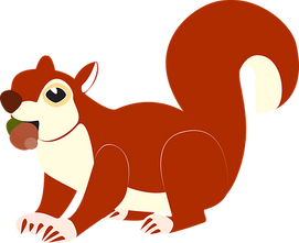 the-squirrel-1096072__340.png