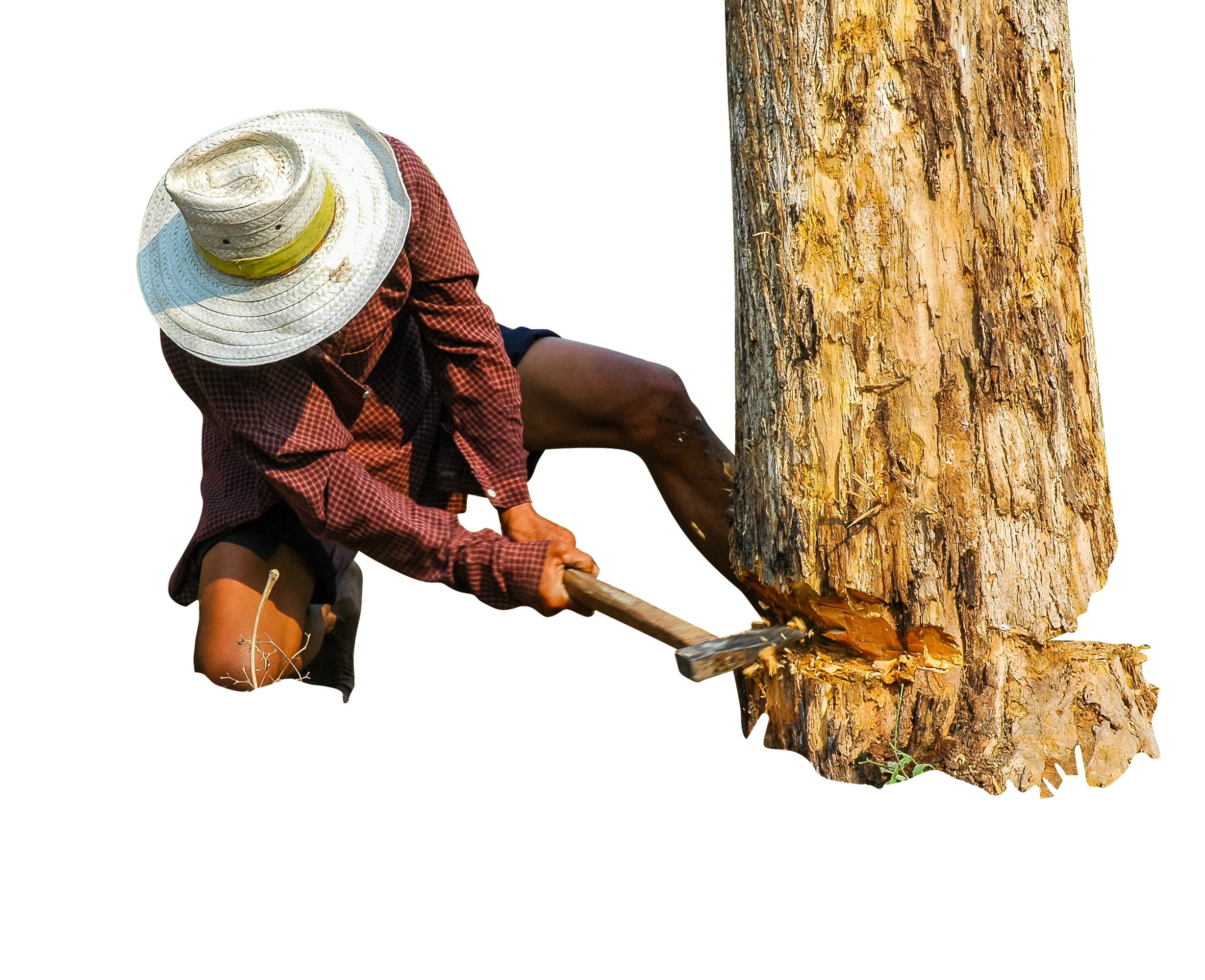 lumberjack-199694_Clip