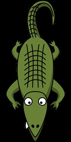 alligator-47725__340