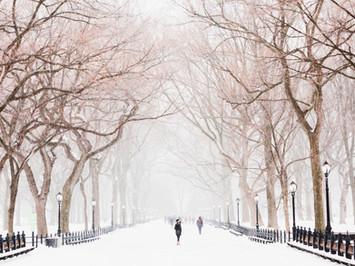Cossyimages Winter (24).jpg