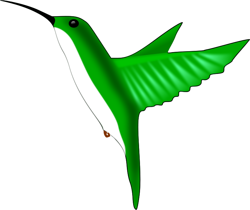 Chrisdesign_Hummingbird