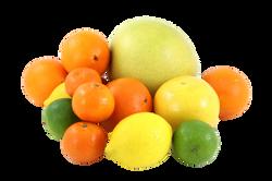 fruit-15408_Clip