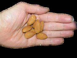 almonds-639536_Clip