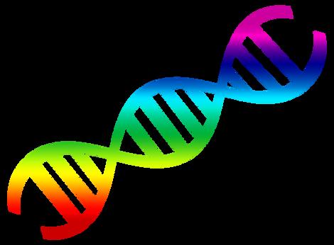 PNGPIX-COM-DNA-Vector-PNG-Transparent-Image.png