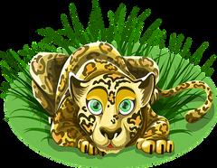 leopard-1456554__340.png