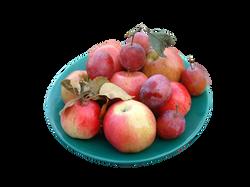 apple-54645_Clip