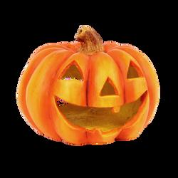 pumpkin-786668_Clip