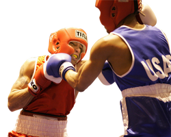 boxers-858418_Clip