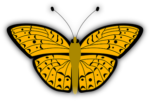butterfly-33051__340.png