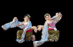 Dance, dancing, couple, arts, show, people, pngs (105)