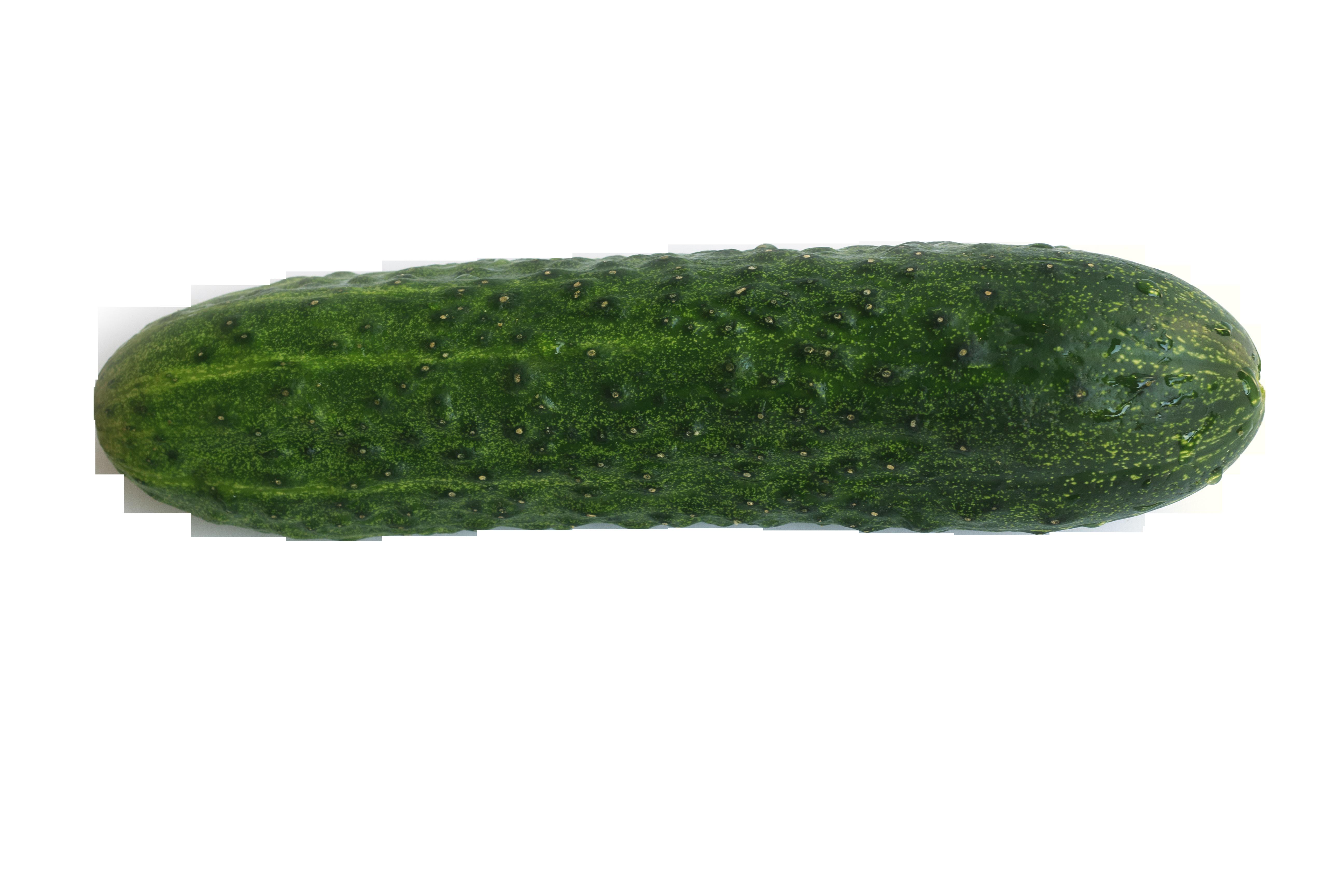 cucumber-845953_Clip
