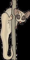 lemur-44767__340.png