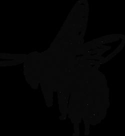 PeterM_Bee