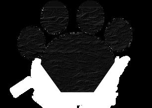 lesnivila_Black_Cat_Paw.png