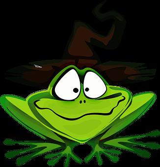 amphibian-1298147__340