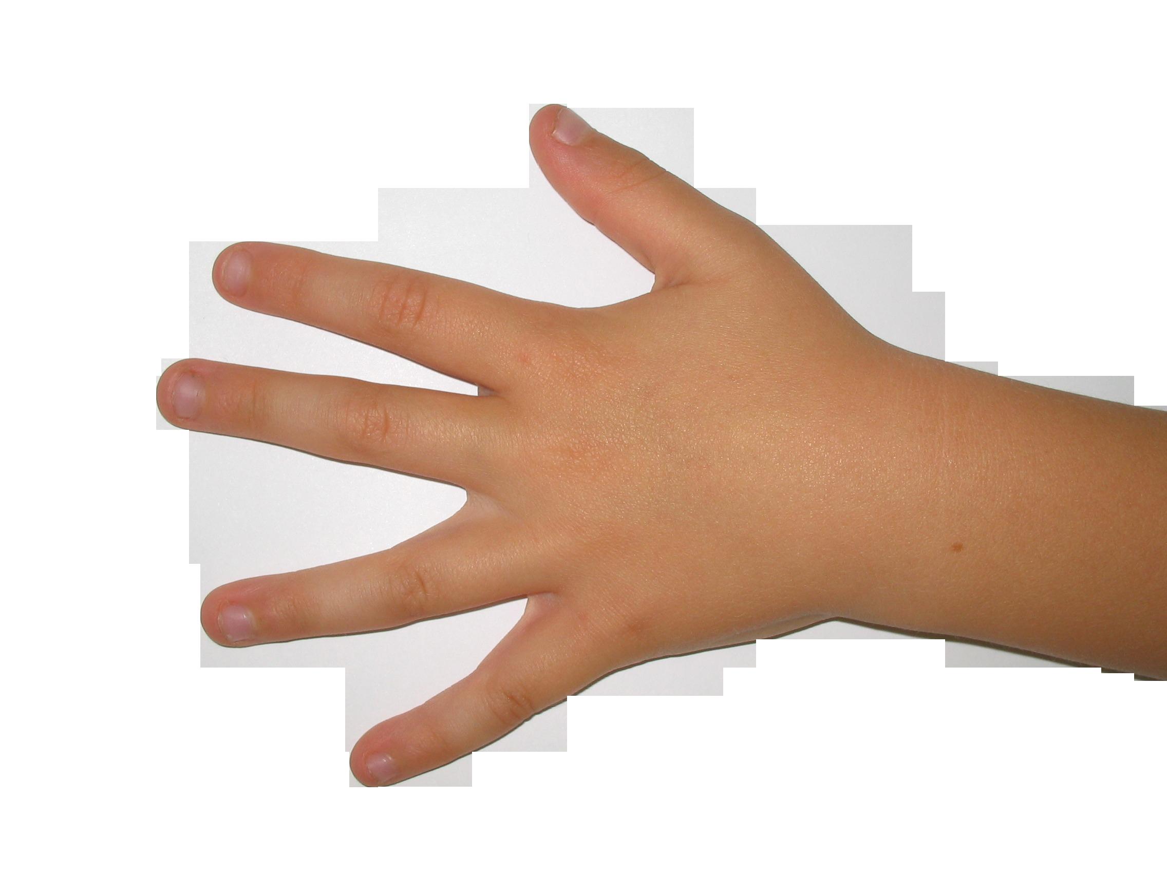 hand-106728_Clip