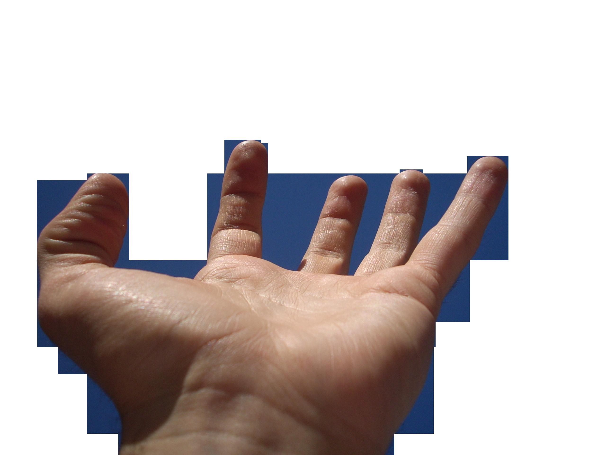 hand-57312_Clip