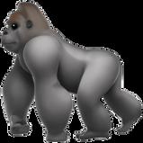 PNG images, Emoji, monkey,