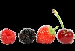 berry-1238249_Clip
