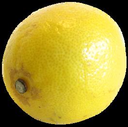Lemon-PNG-image-2.png