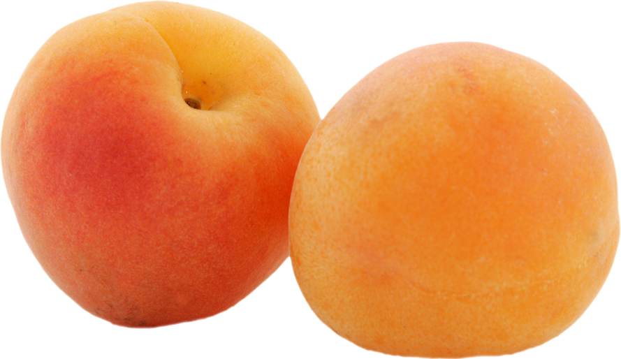 Apricot PNG