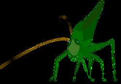 Darb_Grasshopper_with_shadow