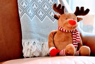 Cossyimages Christmas (75).jpg