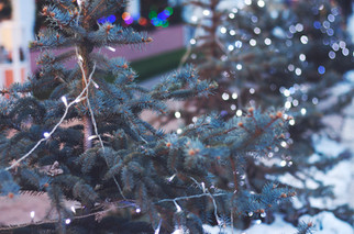 Cossyimages Christmas (51).jpg
