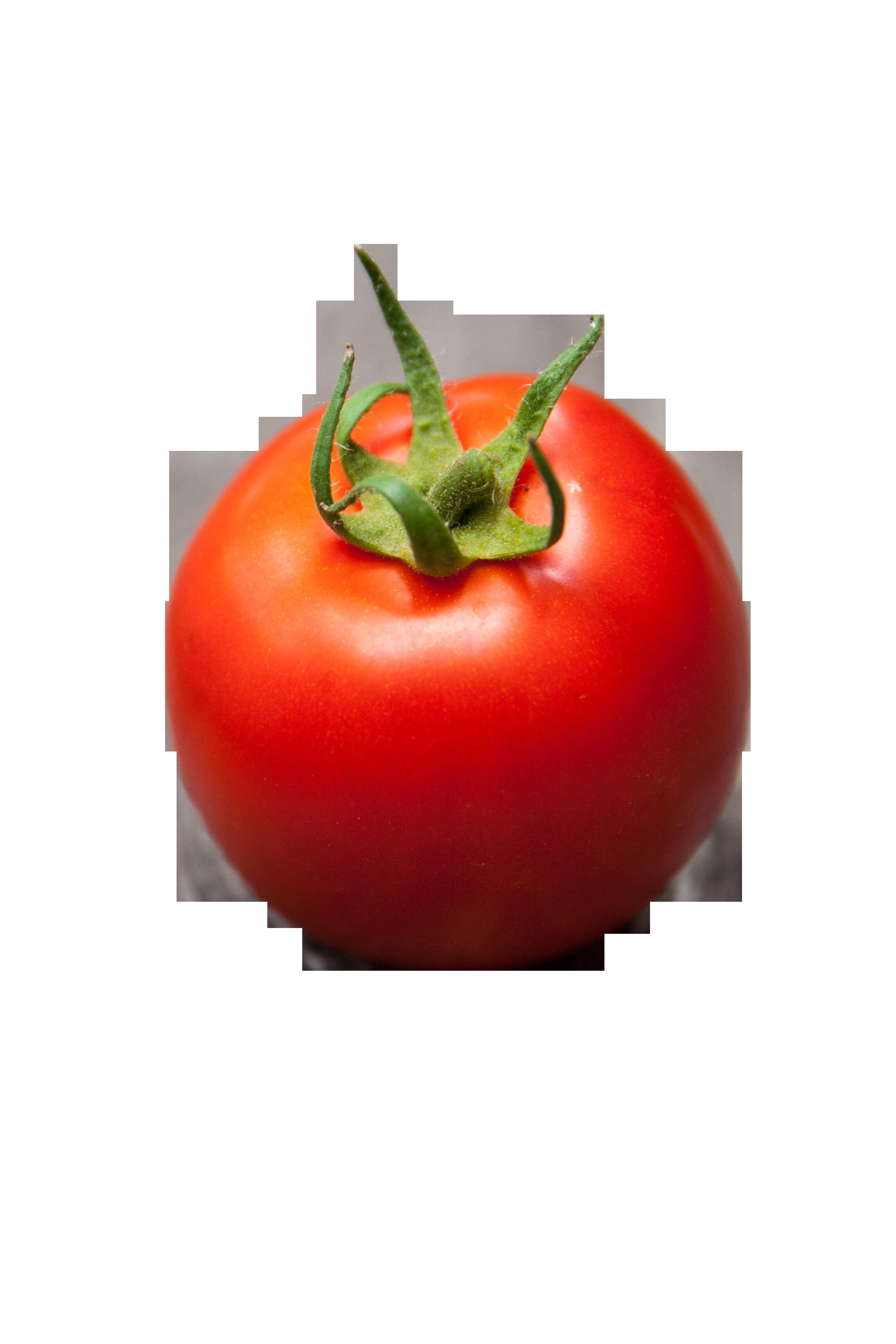 tomato-1176408_Clip
