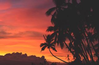 Cossyimages Sunset (46).jpg