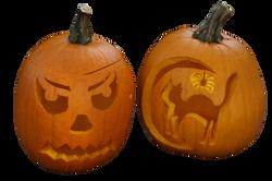 pumpkin-1005004_Clip