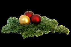 tree-decorations-842046_Clip
