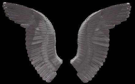 Wings-png-31