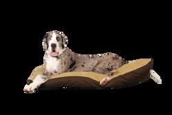 dog-1143693_Clip