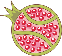 pomegranate-439399__340.png