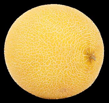 Melon-PNG-Image1.png