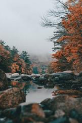 Cossyimages Autumn (90).jpg
