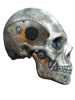 Skeleton transparent images
