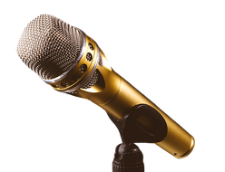 microphone-2763589__340.png