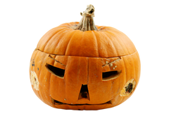 pumpkin-1009613_Clip
