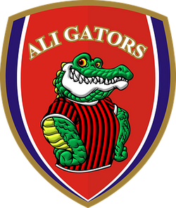 aligator-47198__340