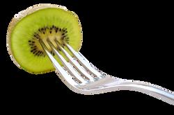 kiwi-504174_Clip